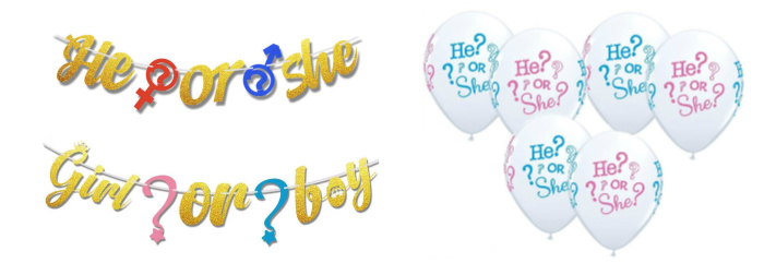 He or She Baby Shower