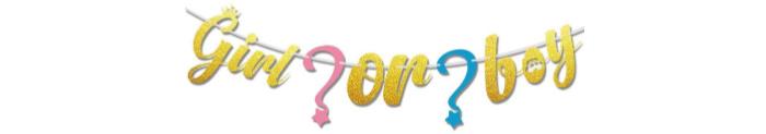 boy or girl banner